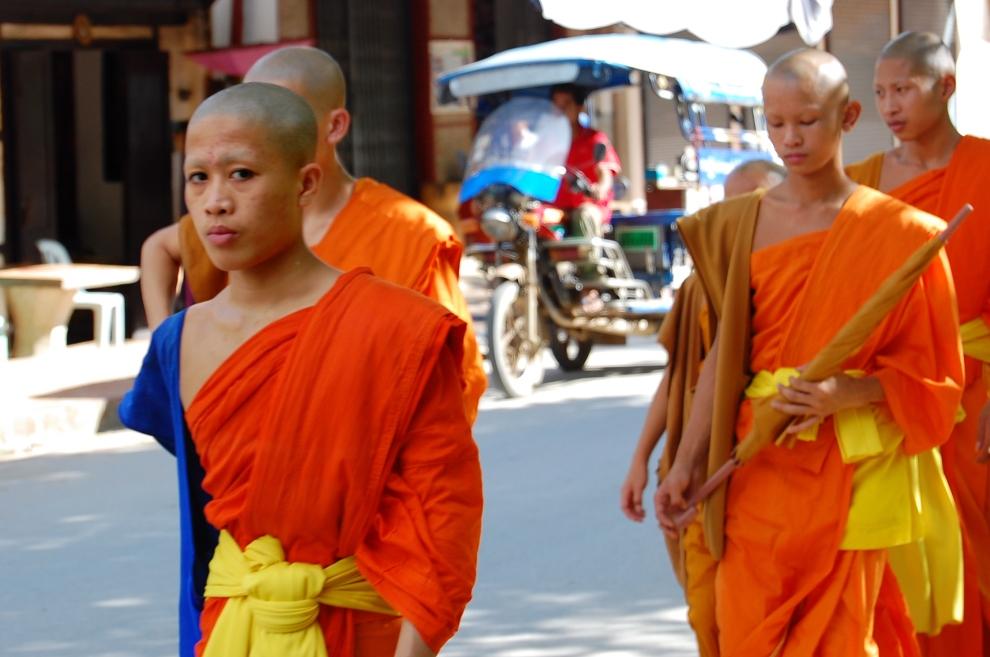 monk glare